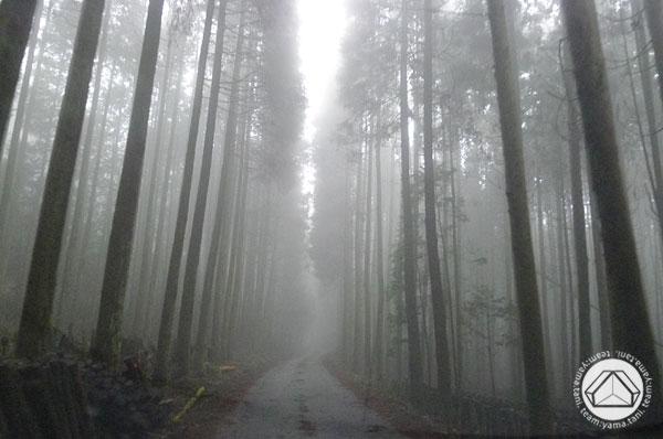 ∴里山の竣工体感会を開催しています∵_d0040733_2163998.jpg