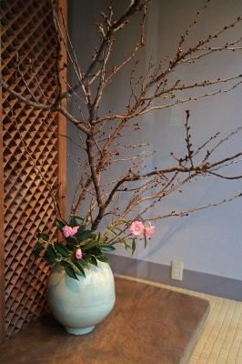 花だより 桜と大壷_a0279848_17113205.jpg