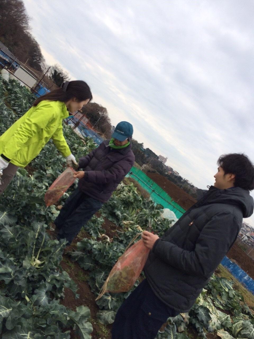 本日は総勢5名 各野菜順調に収穫しました _c0222448_19323770.jpg