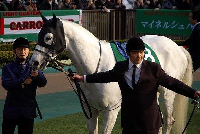 根岸Sは新星・4歳馬モーニンが人気に応え重賞初制覇_b0015386_2147377.jpg