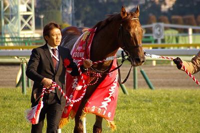根岸Sは新星・4歳馬モーニンが人気に応え重賞初制覇_b0015386_2148074.jpg