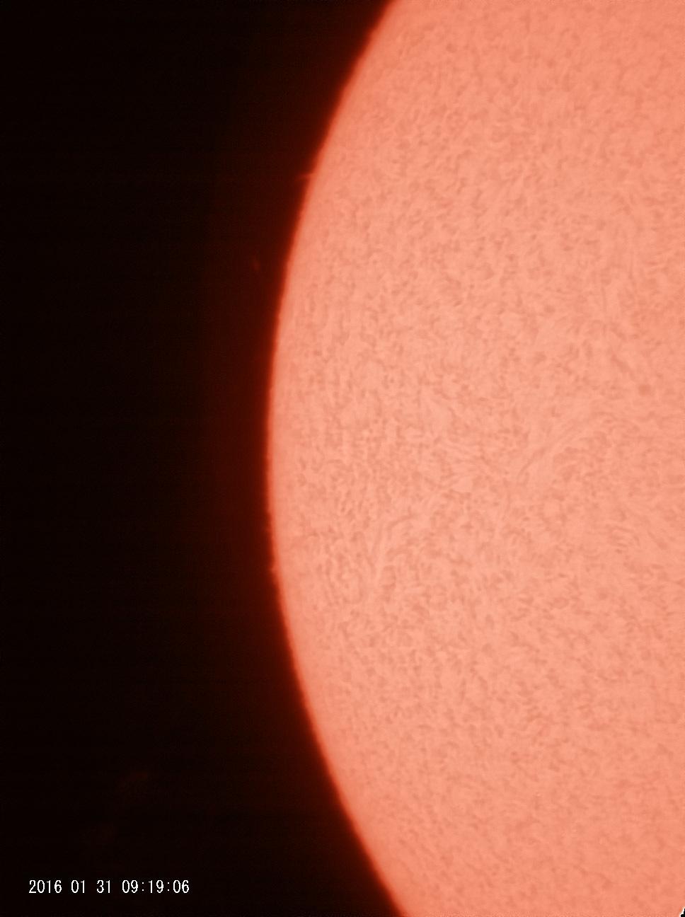1月31日の太陽 大プロミネンス出現!_e0174091_12320851.jpg