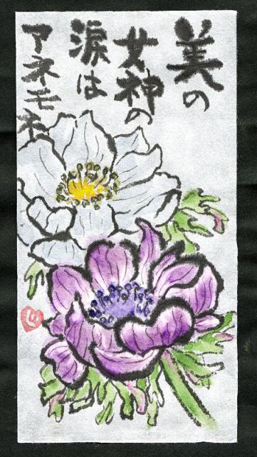 ロマンチックな花 アネモネ_f0346196_12522472.jpg