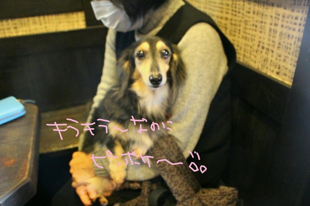 髪_b0130018_14004646.jpg