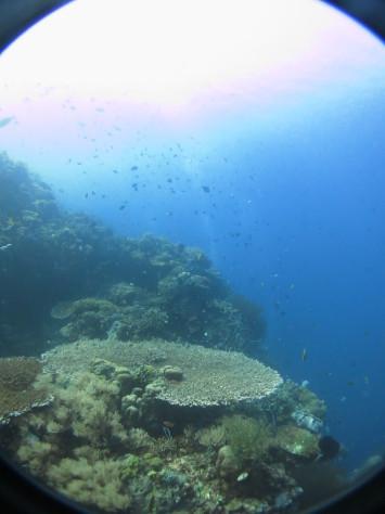 バリ島ツアー報告4日目_c0070933_22554676.jpg