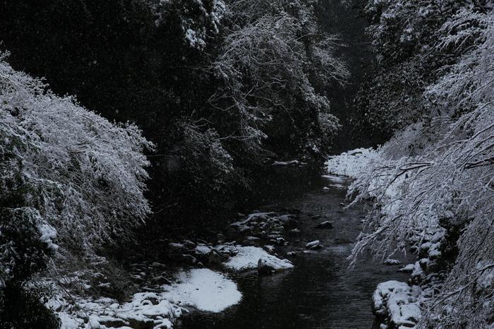 清滝川 雪景色 2016                                 _f0021869_2323697.jpg