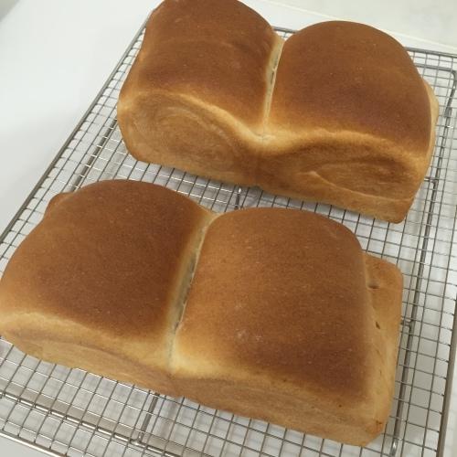 【web内覧会】パン焼き仕様のパントリーに変更_a0335677_00201539.jpeg