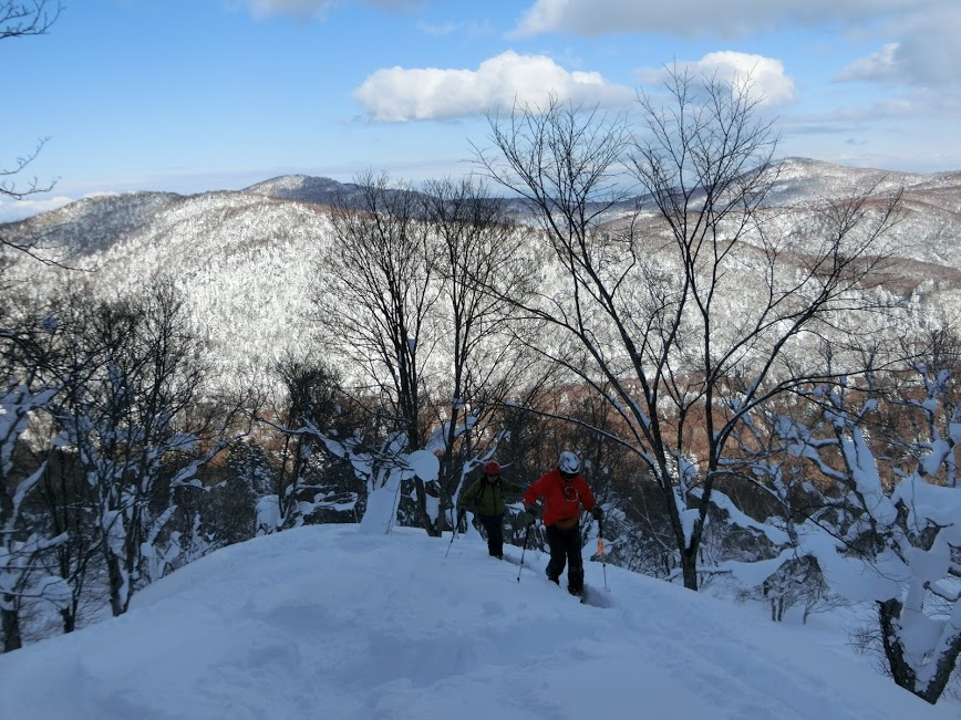 2016年1月23日札幌国際スキー場に近い白井岳支尾根の山を滑る_c0242406_10471365.jpg