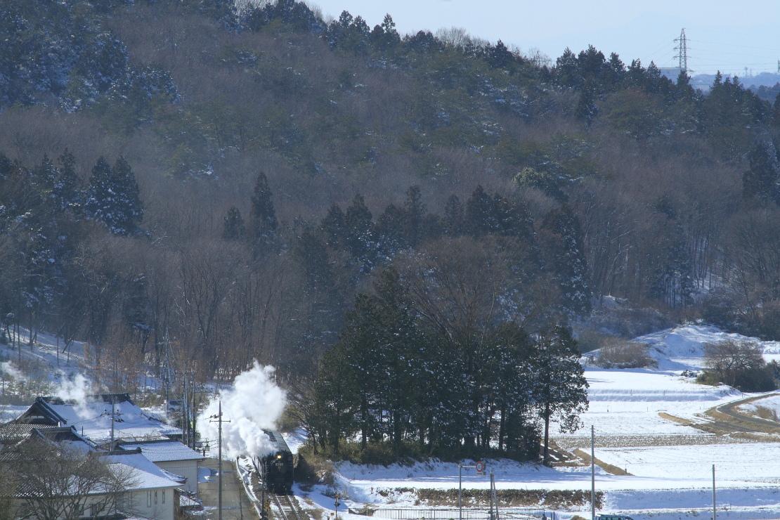 雪晴れ - 2016年冬・真岡 -   _b0190710_2383742.jpg