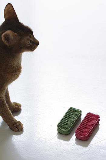 [猫的]ラバーブラシ_e0090124_0173544.jpg