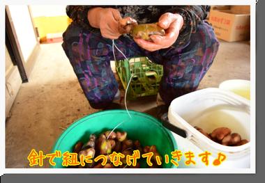 野田村でアンデス地方の食との繋がりを感じたのだ♪_c0259934_08543601.png