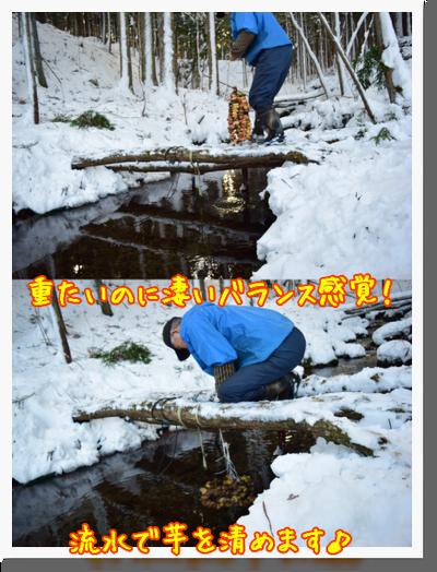 野田村でアンデス地方の食との繋がりを感じたのだ♪_c0259934_09262097.png