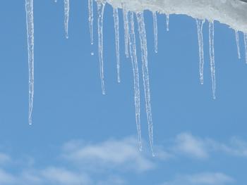 雪の雫 2日目_a0014840_2159335.jpg