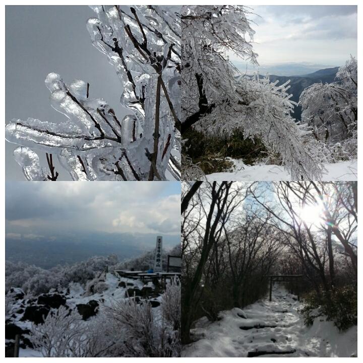 雨氷_d0157745_1947133.jpg