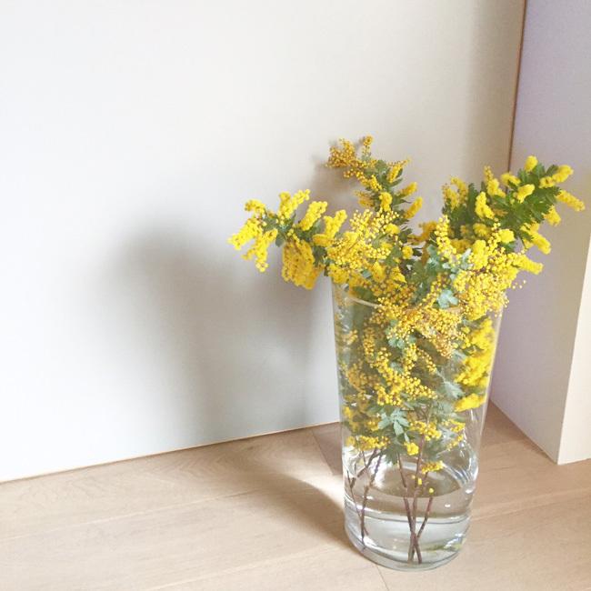 わが家が春色になりました_b0156360_22255511.jpg