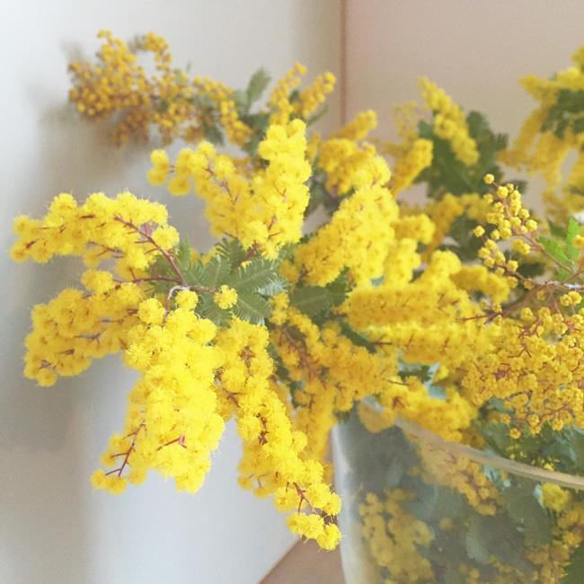 わが家が春色になりました_b0156360_22261863.jpg