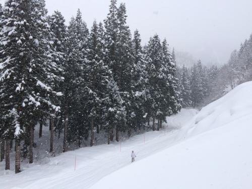 神立高原スキー場⭐︎_c0151965_18324481.jpg