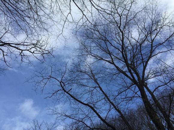 ETER160202 冬が終わり、春が訪れる日とされているがまだまだ空気はヒンヤリしている。_d0288367_8233676.jpg