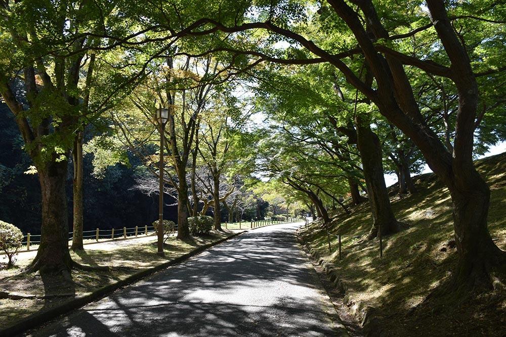 白鷺の天守閣がよみがえった姫路城を歩く。 その7 ~姫山公園・姫路神社~_e0158128_18045081.jpg