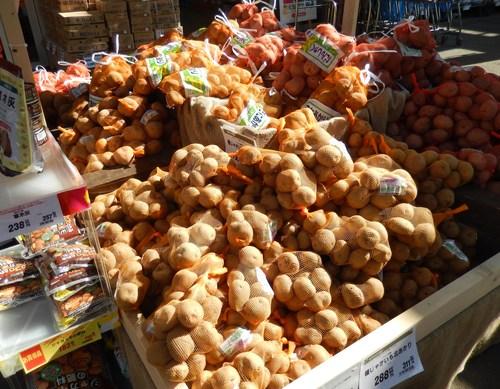 ジャガイモの種芋_b0137932_1223542.jpg