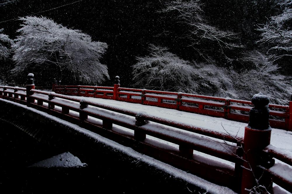 清滝川 雪景色 2016_f0021869_231506.jpg