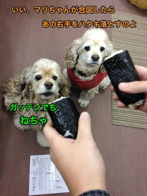 b0067012_171139.jpg