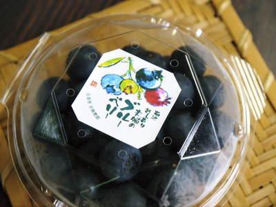 フレッシュブルーベリー 大きくて美味しい果実を実らせるために!枯れ枝剪定と冬の剪定作業の様子_a0254656_17222022.jpg