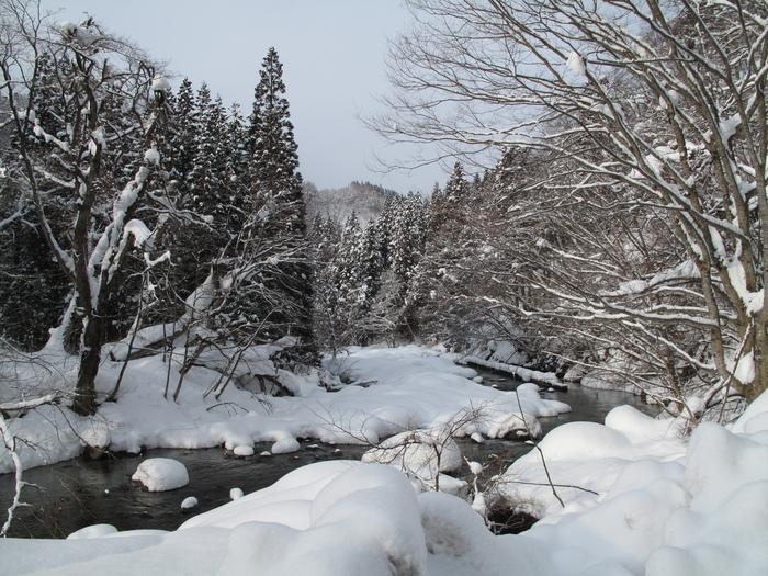 列車で冬の東北 温泉旅 ( 初日 )_d0150720_17241616.jpg