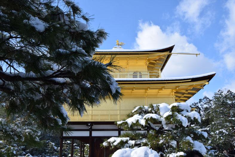 1月雪の京都研修_a0147436_173281.jpg