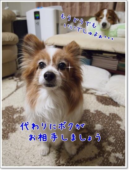 d0013149_00412154.jpg