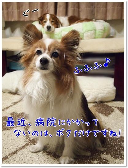 d0013149_01392660.jpg