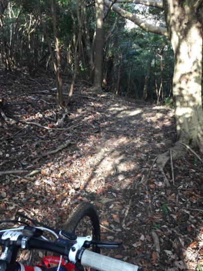 3年振りのマウンテンバイク。眉山縦走路。_f0053665_12320112.jpg