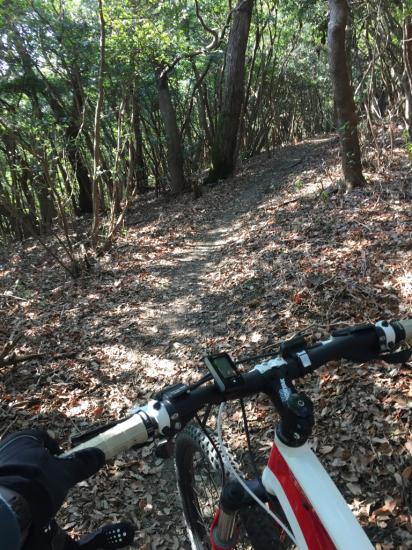 3年振りのマウンテンバイク。眉山縦走路。_f0053665_12320193.jpg