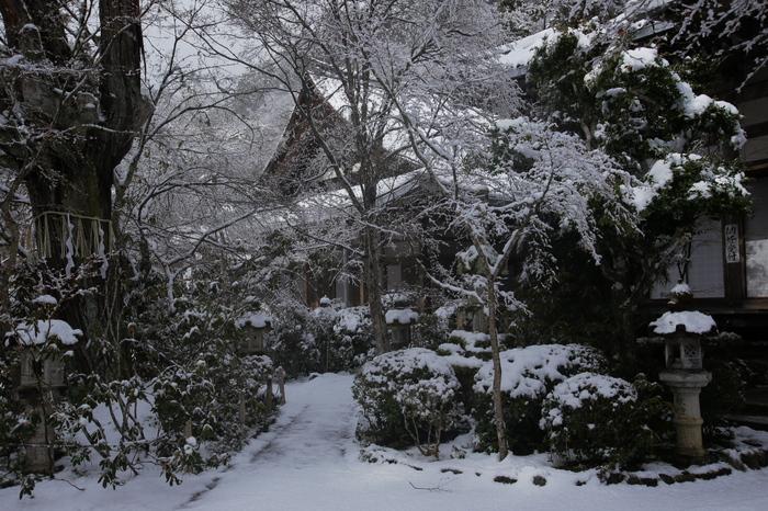 西明寺 雪景色 2016_f0021869_23182728.jpg