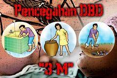 nyamuk Aedes aegypti _a0051297_1436355.jpg