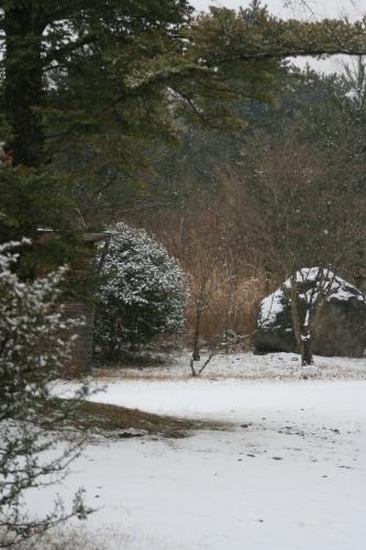 今日は雪…_e0179508_11115302.jpg