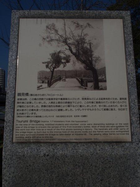定点観測@鶴見橋東詰被爆樹_b0190540_1791868.jpg