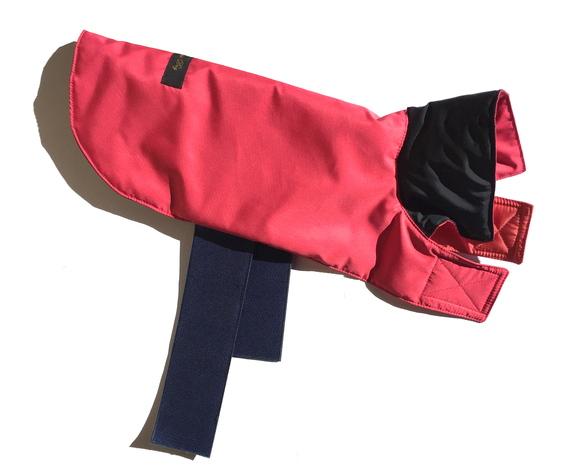 LIMONTA PREMIUM & H2OFF DOG Jacket reversible  リモンタ プレミアム ドッグ ジャケット リバーシブル_d0217958_12231965.jpg