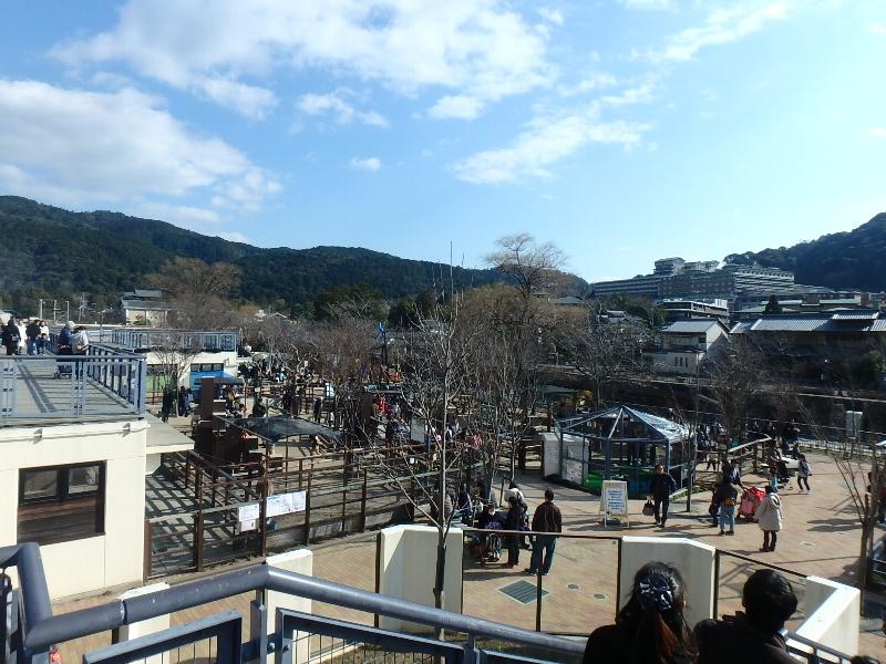 京都市動物園★バイキング_c0113733_1305048.jpg