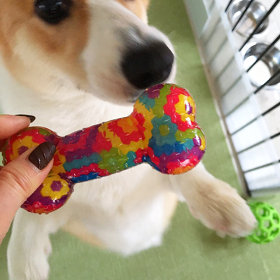二朗のおもちゃ事情_f0035333_16551324.jpg