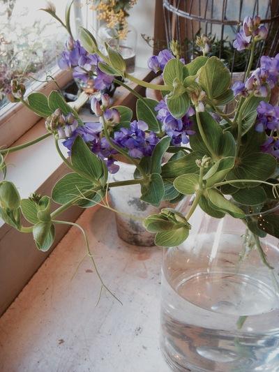 ご注文のお花たち。。。_a0229658_1621696.jpg