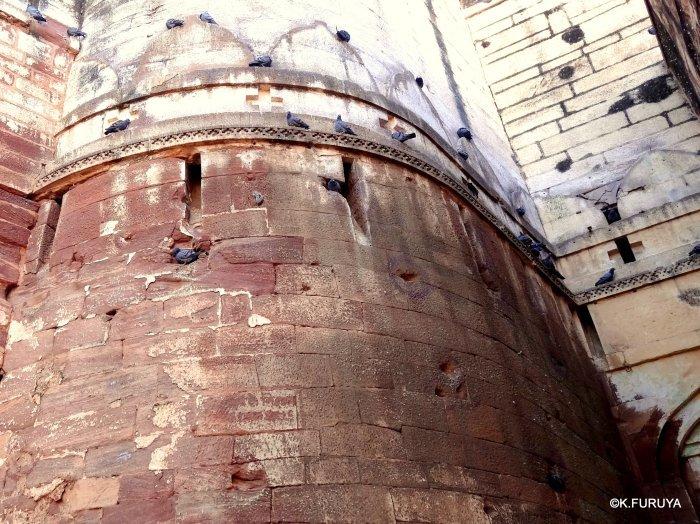インド・ラジャスタンの旅 5  メヘラーンガル砦  その1_a0092659_13525246.jpg