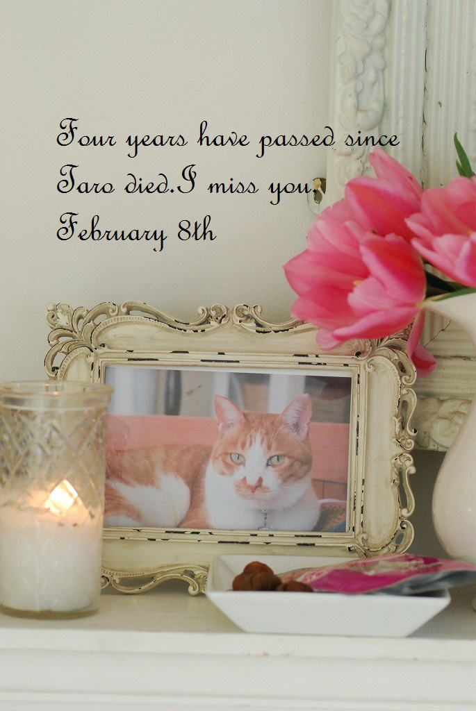 Four Years have passed☆_b0175400_1430546.jpg