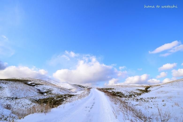 積雪量が少ない_e0120026_11332696.jpg