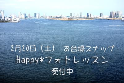 カモメ_b0049843_104694.jpg