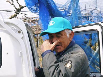 熊本梨 岩永農園 匠の剪定と誘引作業!3年先を見据えながら今年も最高のステージを作ります(後編)_a0254656_1815465.jpg