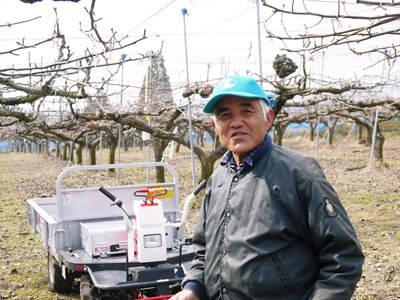 熊本梨 岩永農園 匠の剪定と誘引作業!3年先を見据えながら今年も最高のステージを作ります(後編)_a0254656_18207100.jpg