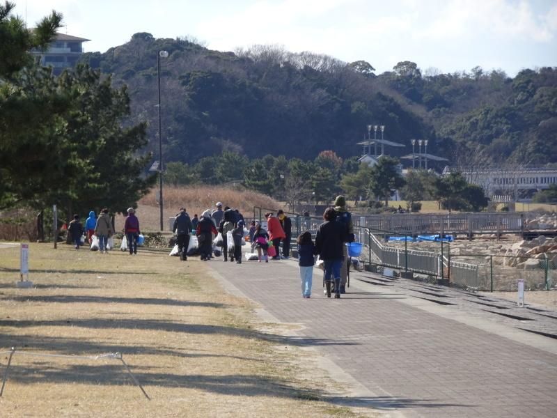みんなでワカメを育てよう!「ワカメ収穫祭り」  in せんなん里海公園_c0108460_01050302.jpg