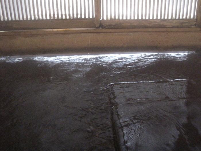列車で冬の東北 温泉旅 ( 2日目 )_d0150720_10531939.jpg