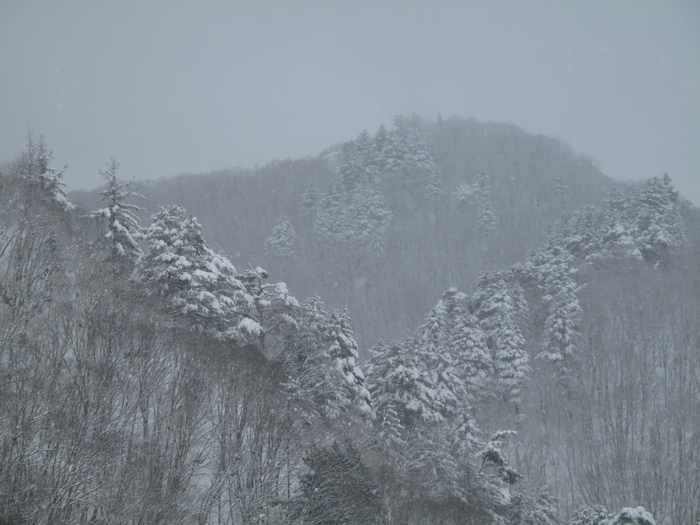 列車で冬の東北 温泉旅 ( 2日目 )_d0150720_117582.jpg